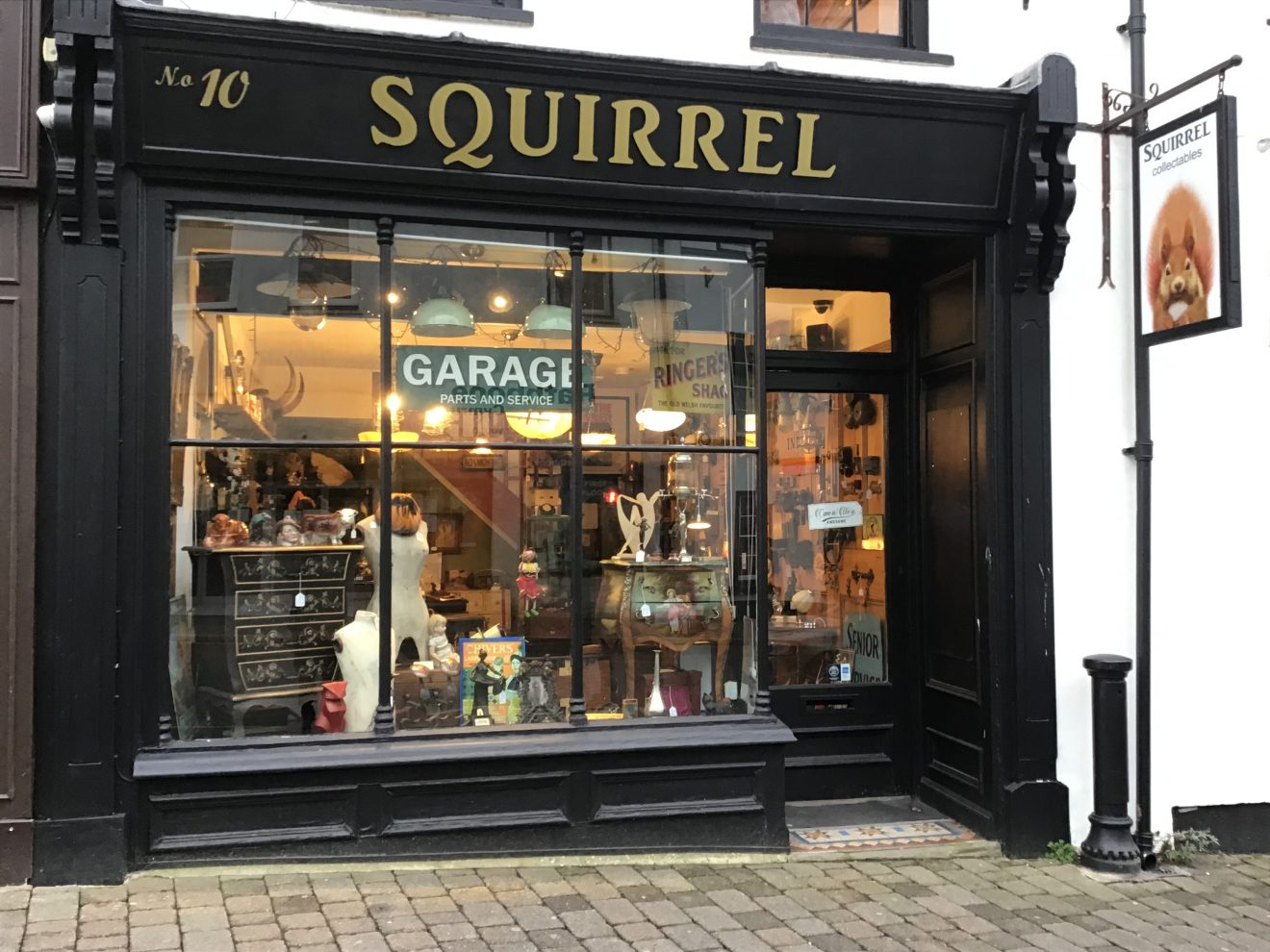 Squirrel Collectables Shop Front